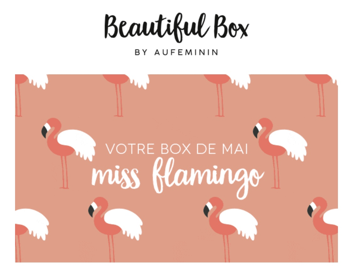 Beautiful Box Miss Flamingo